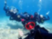 Divers (1).png