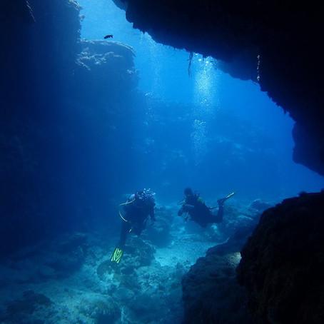 Aventura Continua em Okinawa - Aloha Divers Okinawa - Mergulho em Okinawa