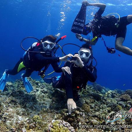 Passando a Lua de Mel mergulhando em Okinawa - Aloha Divers Okinawa