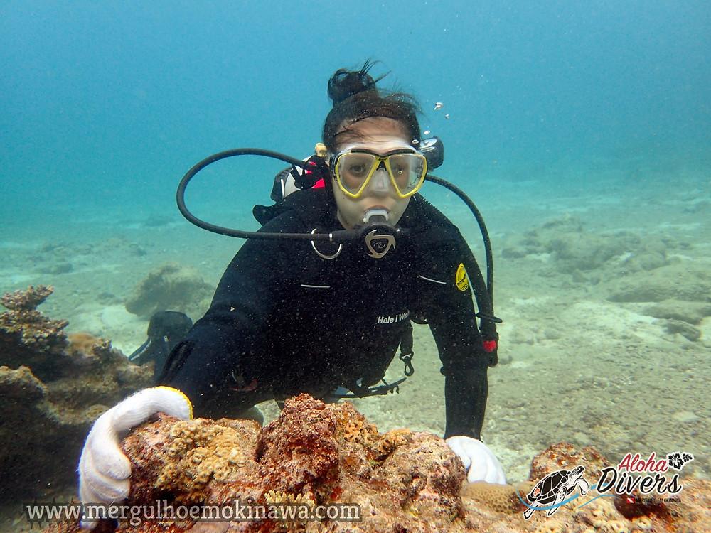 DSD. Mergulho Experimental - Aloha Divers Okinawa - Mergulho em Okinawa