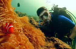 Discover Scuba Diving - Aloha Divers Oki