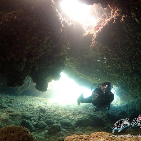 Matando a saudade de Mergulhar com Aloha Divers Okinawa - Mergulho em Okinawa