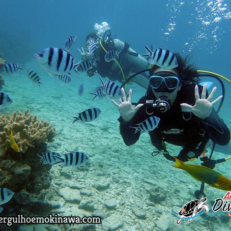 Curso de Open Water Diver e Fun Diver - Aloha Divers Okinawa - Mergulho em Okinawa