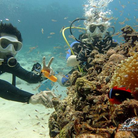 Mergulho de amigos em Kerama - Aloha Divers Okinawa