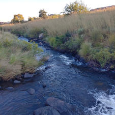 River for stream fishing