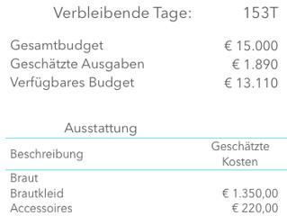 Wie erstellen wir unser Hochzeitsbudget? Hier bekommt ihr Infos über die ersten Schritte in Richtung