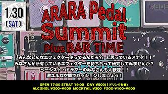 ARARA20210130.png