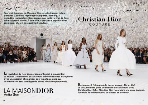 Dior French Project 2.jpg