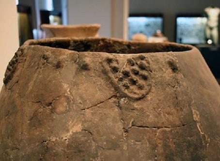 O Vinho mais antigo do mundo