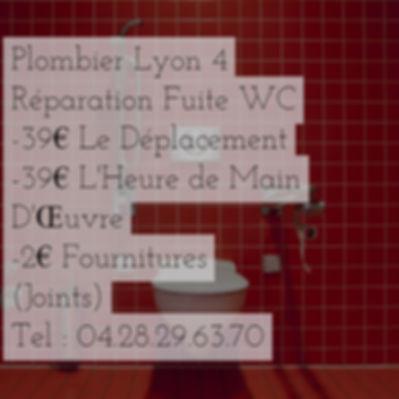 Fuite D'eau Lyon 4