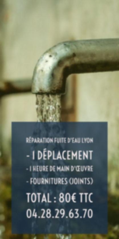 Fuite D'eau Sur Lyon