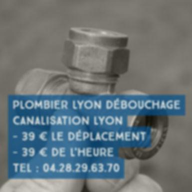 Robinetterie Lyon