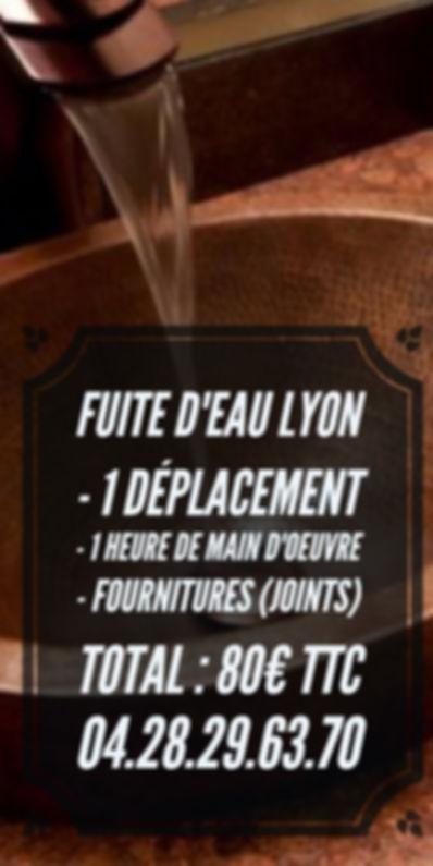 Réparation Fuite D'eau Lyon