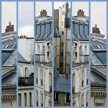 PARIS ROOFTOPS Collage.jpg