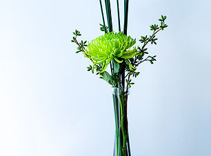 Florateria_Maio-33.jpg