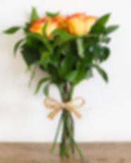 rosas p 1.jpg