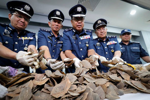 Illegal wildlife trade could trigger another pandemic, activists warn