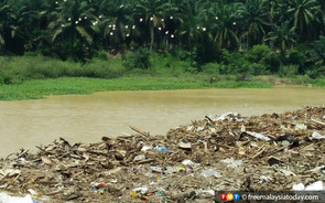 FMT: No need for special body to tackle river pollution, says MNS