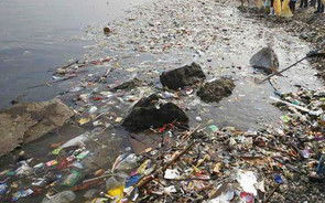 Activists blame govt apathy for river pollution