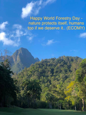 Happy World Forestry Day!