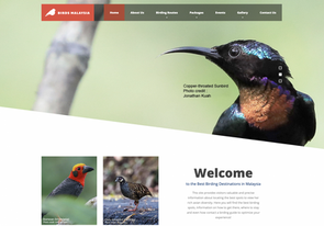 Bird Enthusiasts are Sure to Delight​ from The Newly-Launched Official Birding Website in Malaysia