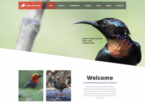 Bird Enthusiasts are Sure to Delight from The Newly-Launched Official Birding Website in Malaysia
