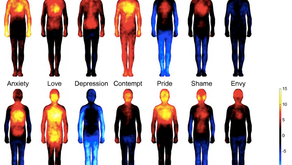 Emotional Biochemistry - Our Bodies Respond to What We Feel...
