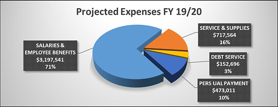 Projected Expenses FY 19:20.jpg