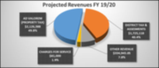 Projected Revenue FY 19:20.jpg