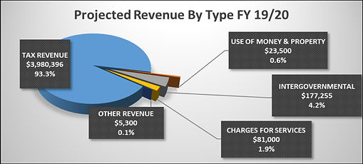 Projected Revenue by Type FY 19:20.jpg