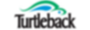 Logo - Turtleback.png