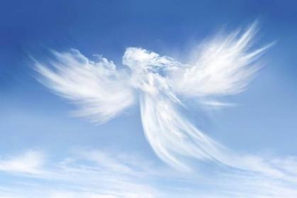 Angel picture.jpg