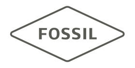 FG-2016only-Fossil.png