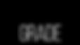 Prosumer Grade Logo