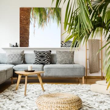 California Palm