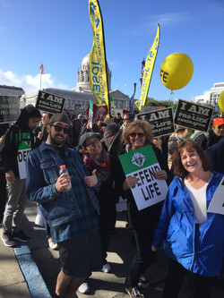 SF Walk for life 2016