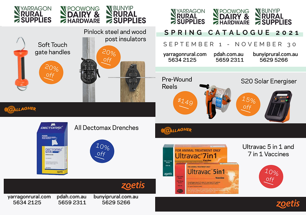 spring catalogue front page.PNG