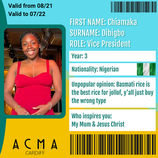 VICE PRESIDENT: Chiamaka Dibigbo