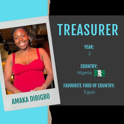 Treasurer - Amaka