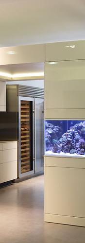 Reef Tank Poggenpohl Artesio