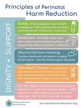 Principles_Perinatal Harm Reduction.png