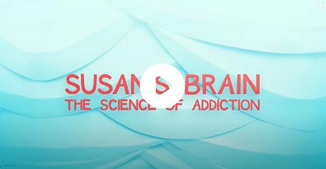 susans brain opiods.png