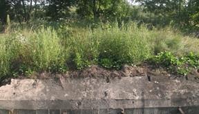 Fort Twierdzy Przemyśl w Negrybce