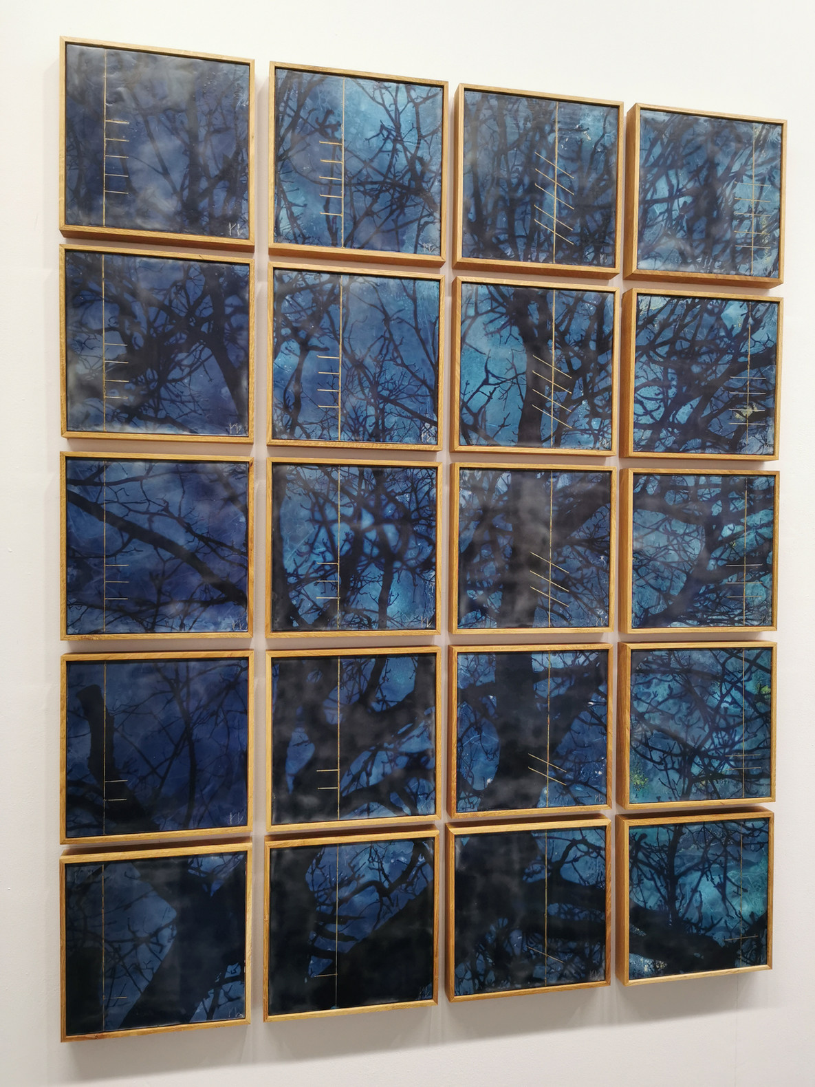 Cyanotype and encaustic wax on paper/board 20 works, 25 x 25 cm each