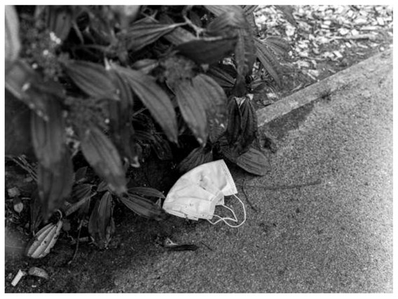 A discarded face mask