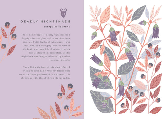 The Painted Woodland  Deadly Nightshade