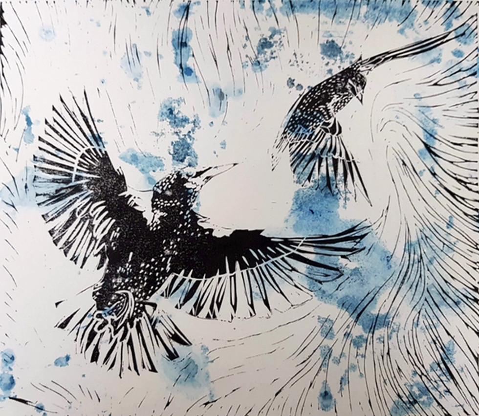 Starling #3