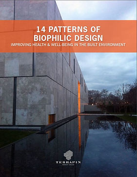 14 Patterns of Biophilic Design.JPG