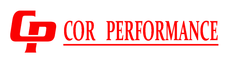 CP Logo for LED.png