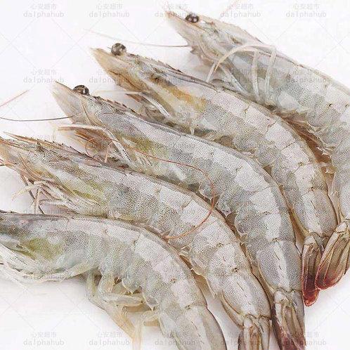 Shrimp 虾(1公斤)